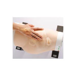 殿筋注射説明模型/看護実習モデル人形 【TypeII】 水注入可 ランプ/ブザー/収納ケース付き M-152-1